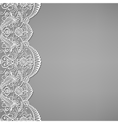 Lace and floral ornaments vector