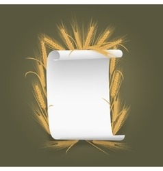 Banner Label template paper sheet with wheat vector image vector image