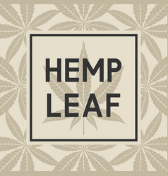 black frame against cannabis leaves vector image