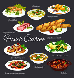 French dishes meat and vegetables with baguette vector