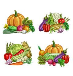 Fresh farm vegetable sketches veggie food vector