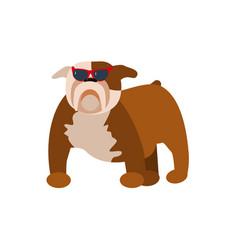 funny pug dog vector image vector image