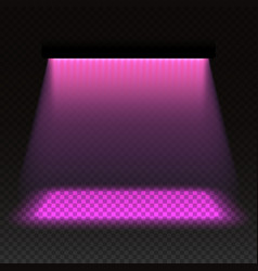 grow light effect vector image