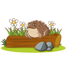 Isolated picture brown toad on log vector