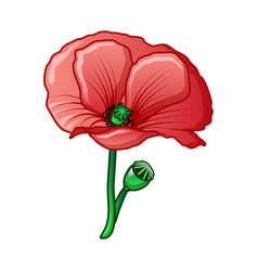 Poppy drug flower icon cartoon style vector