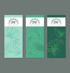 spa flyers health luxury wellness products for vector image