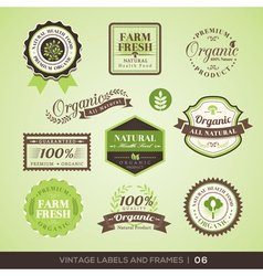 Vintage fresh organic product labels and frames vector
