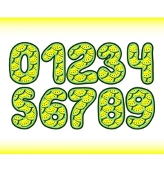 Yellow watermelon numbers 1234567890 in vector image vector image