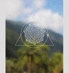 boho sacred geometry mandala on tropic background vector image