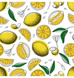Lemon seamless pattern Drawing lemon vector image