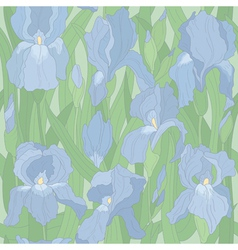 seamless pattern with irises vector image vector image