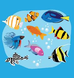 tropical fish vector image vector image