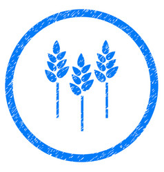 wheat ears rounded grainy icon vector image