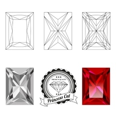 Set of princess cut jewel views vector image vector image