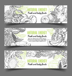 Banner with natural exotic fruits vector