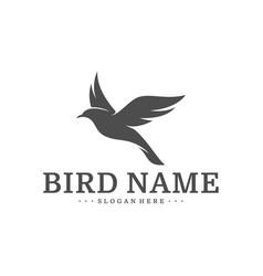 bird logo design template bird icon concept vector image