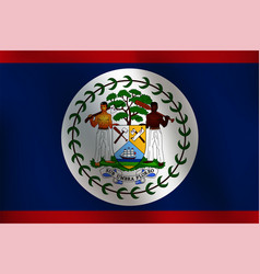 Flag of belize - vector