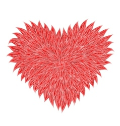 fluffy red heart vector image