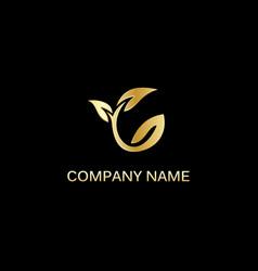 Gold leaf seed logo vector