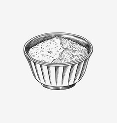 Salt or sugar in a bowl spices or cereals in vector