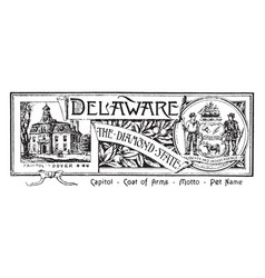 the state banner of delaware the diamond state vector image