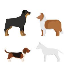 Funny cartoon dog character bread in cartoon style vector