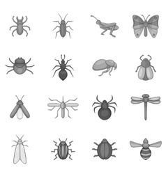 Insect icons set gray monochrome style vector image