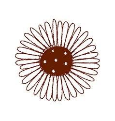 a view flower vector image