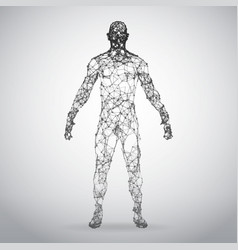 Abstract wire frame human body polygonal 3d model vector