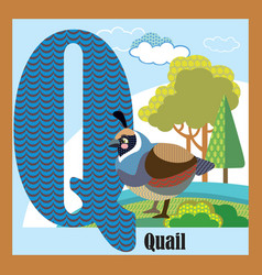 Animal alphabet q vector