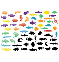 fish silhouettes set vector image vector image