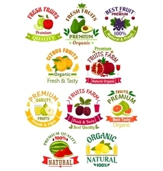 Fresh fruit juice icons signs badges set vector image
