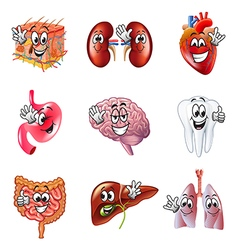 Funny cartoon human organs icons set vector