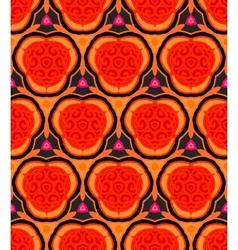 multicolor ethnic pattern vector image
