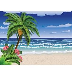 Palm tree on beach vector