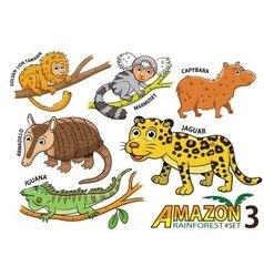 set cute cartoon animals in amazon vector image