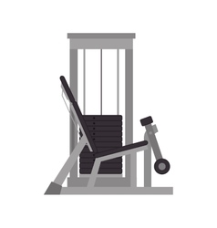 Weights gym equipment vector