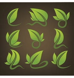 glossy leaves signs and symbols on background vector image