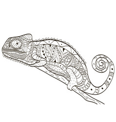 chameleon coloring book for adults vector image