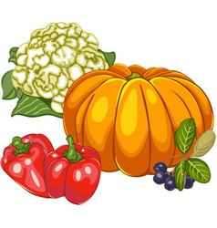 Bright ripen vegetables vector