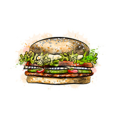 Burger from a splash of watercolor vector