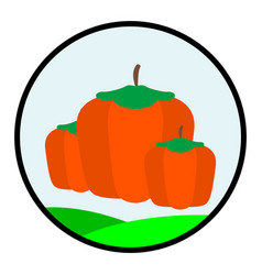 Flat color pumpkin icon vector