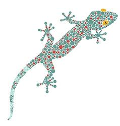 Gecko preview vector