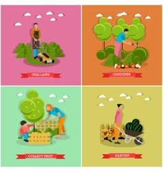 Set of gardening agriculture flat design vector