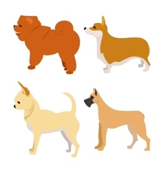 Set of purebred dogs vector