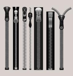 zippers fastener set vector image
