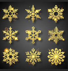 collection gold glitter snowflakes nine vector image