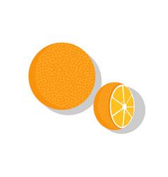orange fruit whole and half vector image