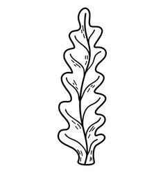 Outline marine seaweed nature plant style vector