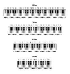 piano keyboards layouts vector image